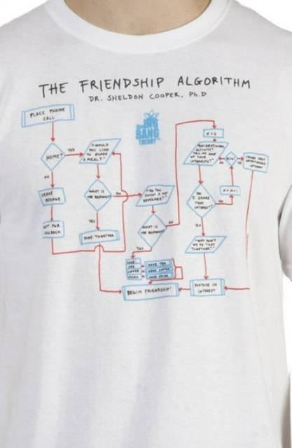 Big Bang Theory Shirt Friendship Algorithm