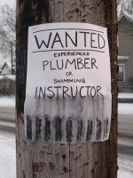 Plumber or Swimming Instructor