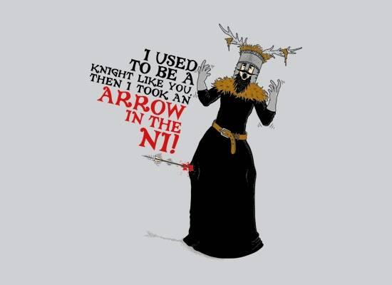 An Arrow In The Ni