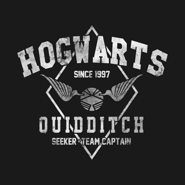 Hogwarts Quidditch (v.2)