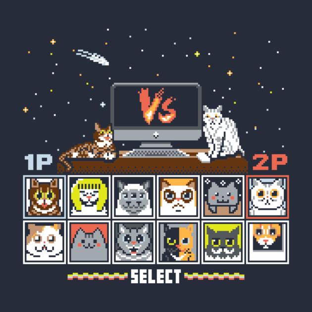 INTERNET CAT FIGHT