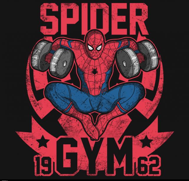 Spider Gym