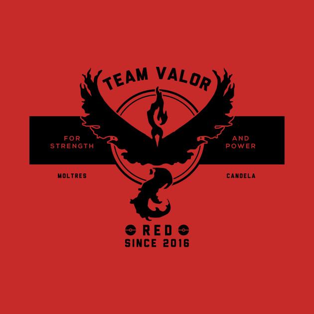 GO with Team Valor