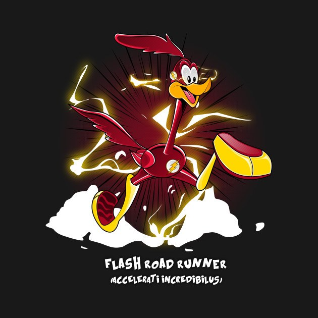 FLASH ROADRUNNER