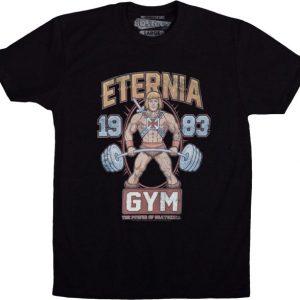 MOTU Eternia Gym