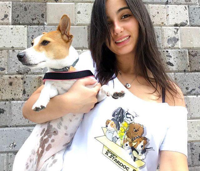 Adopt a Stardog