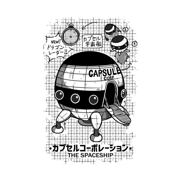 Capsule Spaceship