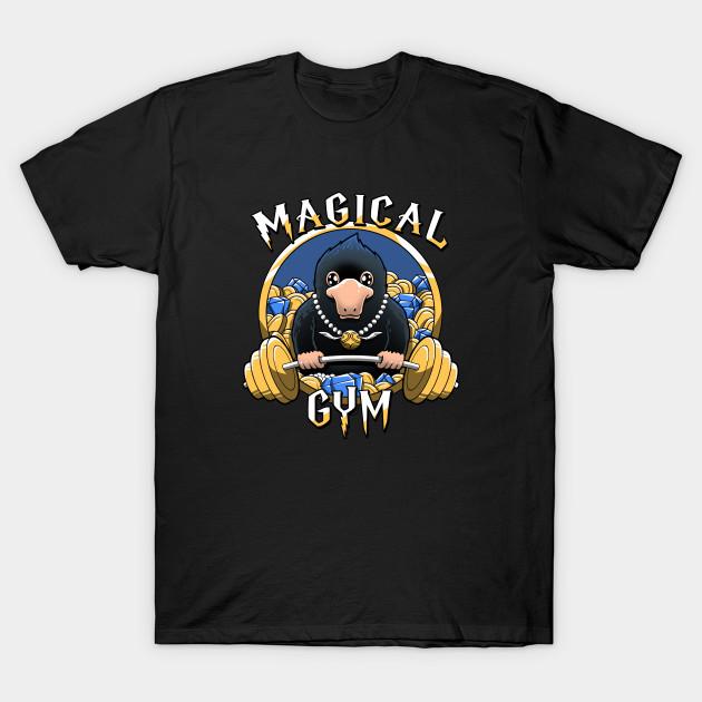 Magical Gym