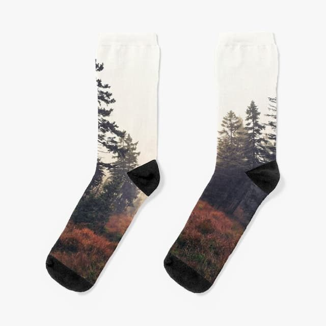 You Are Here Socks