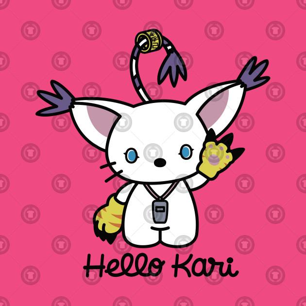 Hello Kari