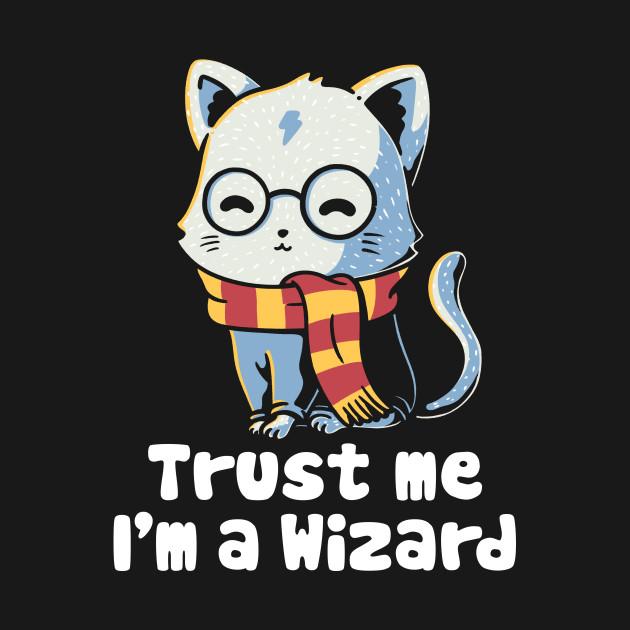Trust me I'm a wizard