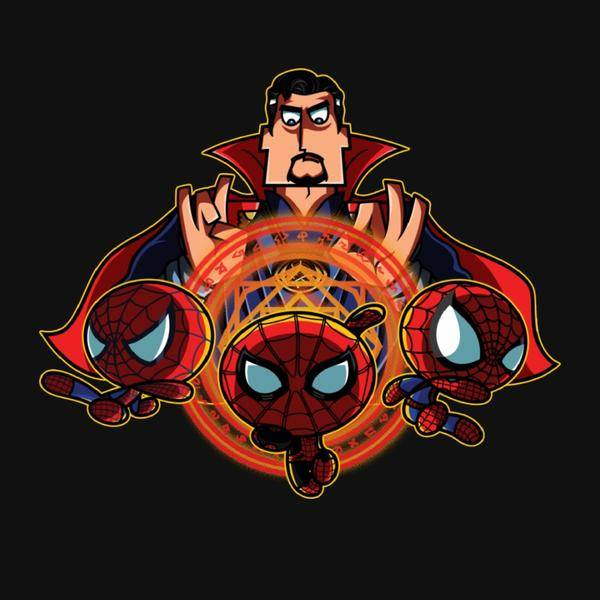 THE SPIDERSTUFF BOYS
